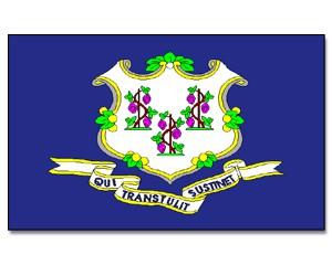 Flagge Connecticut