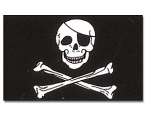 Stock-Flagge Pirat mit Knochen