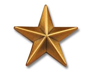 Pins Stern goldfarben (matt) 15 mm
