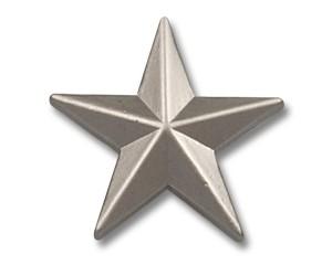 Pins Stern silberfarben (matt) 15 mm