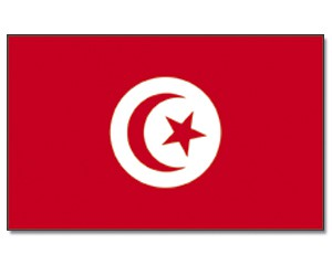 Stock-Flagge Tunesien