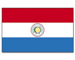 Stock-Flagge Paraguay