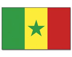 Stock-Flagge Senegal 30 x 45