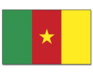 Stock-Flagge Kamerun