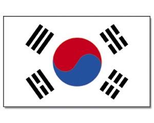Flagge Sükorea